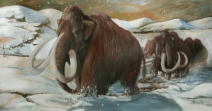 Wooly-Mammoth-Cloned1-620x326
