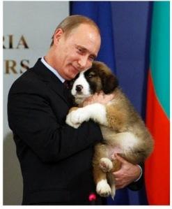 putin_puppy