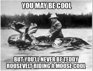 teddy moose