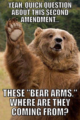 2nd+amendment.+Like+guise+srsly_8dd6dd_3348281