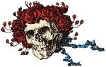 original_GD_skull_roses_color
