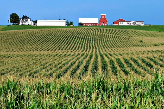 1211-iowa-farmland-630x420