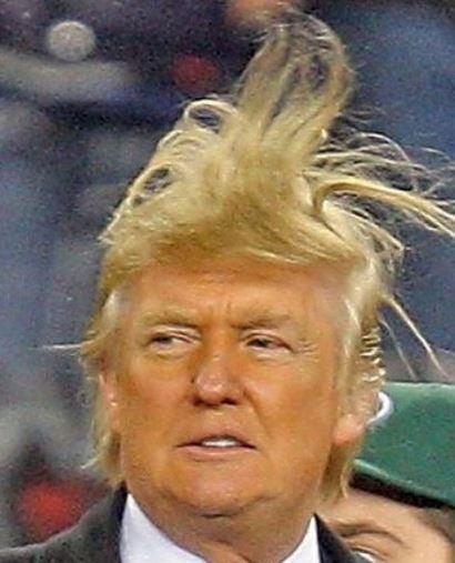 donald-trump-hair