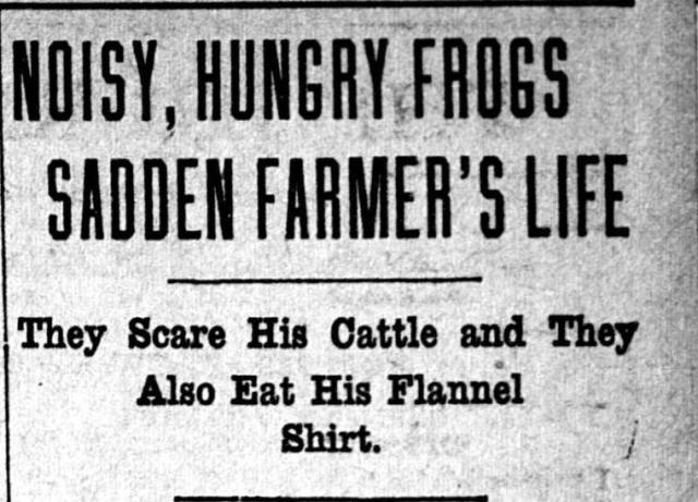 Minneapolis Journal 1906